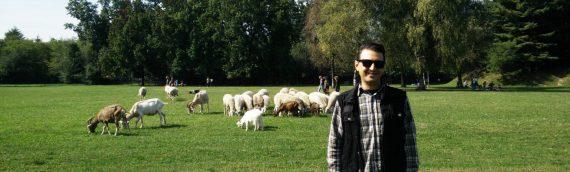 Gab De La Vega: 10 years of veganism, for the animals. / 10 anni di veganismo, per gli animali.