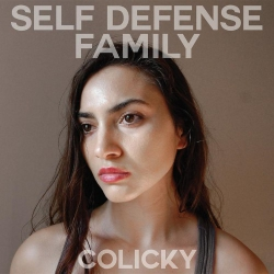 Self Defense Family - Colicky - LP