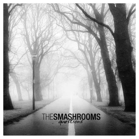 """The Smashrooms - Questions - 7"""""""