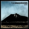 The Smashrooms - Wildfire - LP